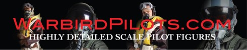 Click here to visit warbirdpilots.com!